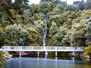 Centennial Garden and Waterfall