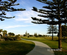 activities and attractions in Napier