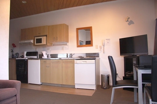 fully equipped kitchen with stove, fridge, microwave, shower