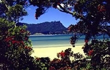 beautiful Whangarei Harbour