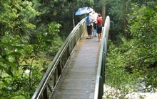 Whangarei Parks and Walkways