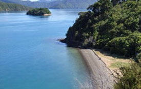 beautiful beaches of Picton