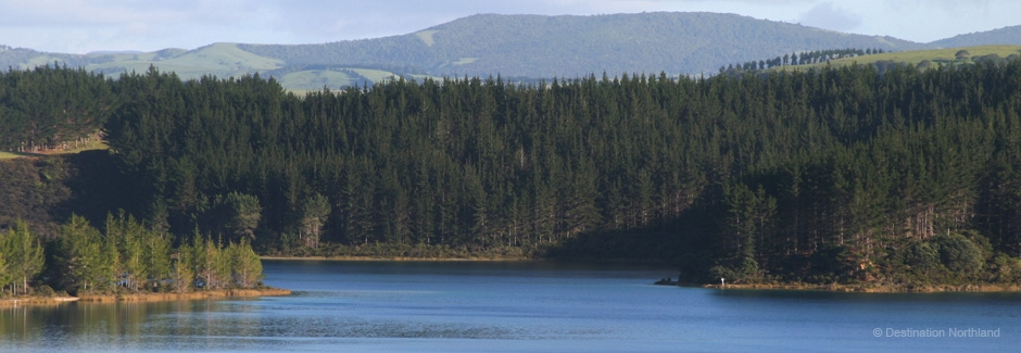 beautiful views of Dargaville, New Zealand