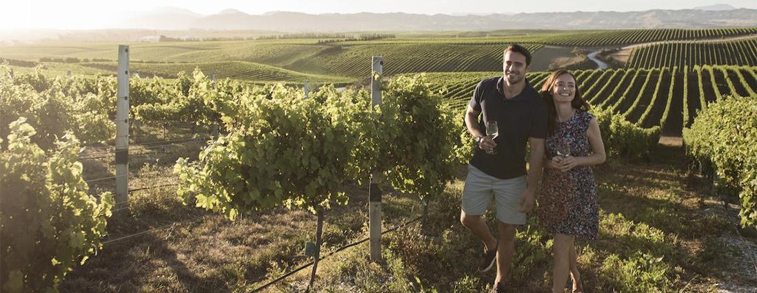 Picton wines