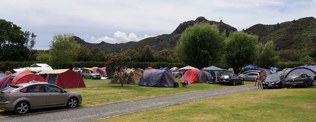 lovely camp sites right next to the beach