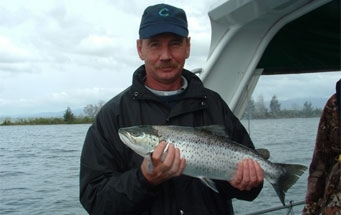 Something Fishy Trout Fishing Charters