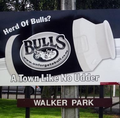 a park in Bulls