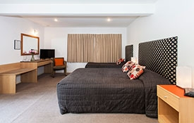 very spacious and modern studio unit