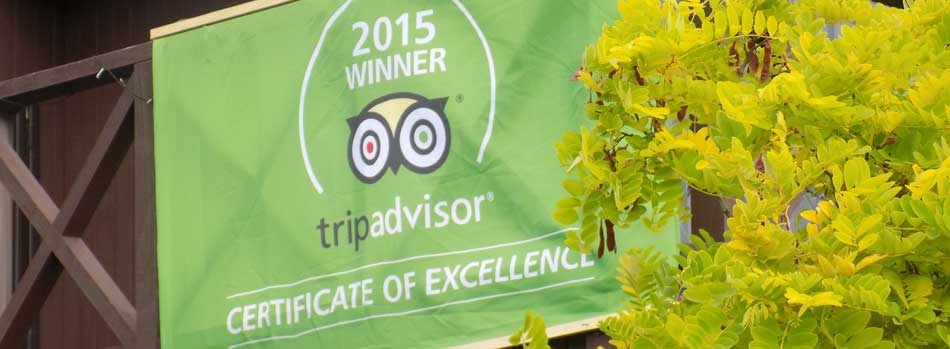 2015 winner of the tripadvisor certificate of excellence