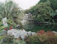 altura-gardens-wildlife