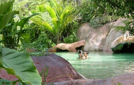 Lost Spring Thermal Pools