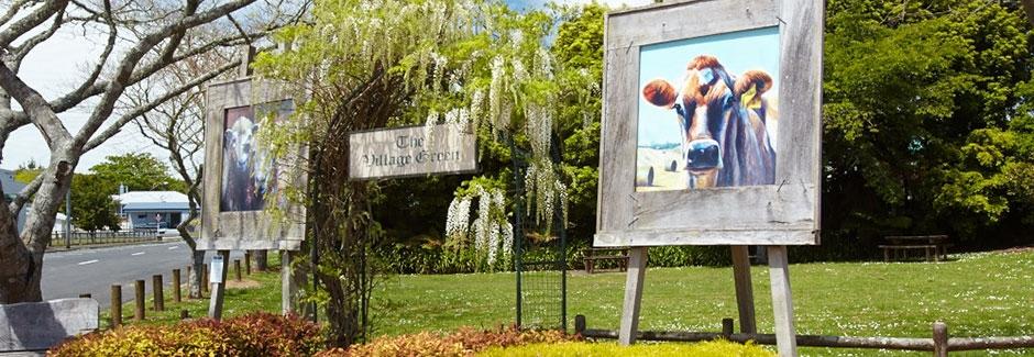 Carmel Farmstays & Tours in Waitomo District
