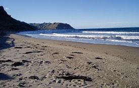 beautiful beaches of Hawke's Bay