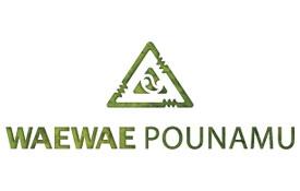Waewae Pounamu