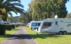 camp sites in Whitianga