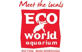 Eco World Aquarium