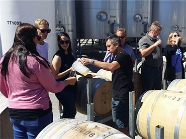 Hop n Grape wine & beer tours