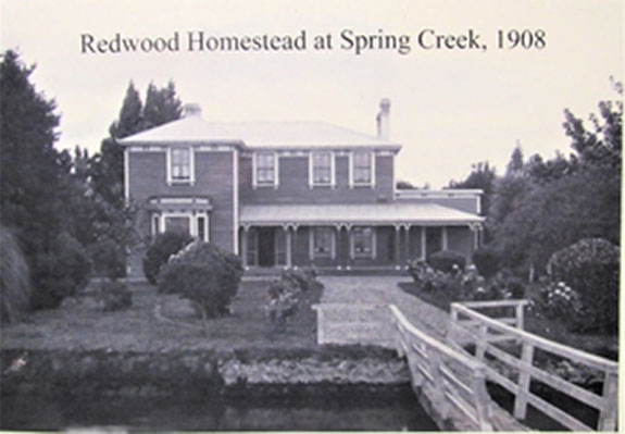 Redwood Homestead at Spring Creek, 1908