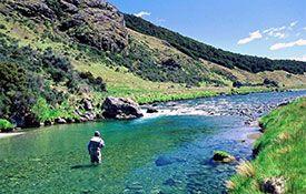 Southland fishing
