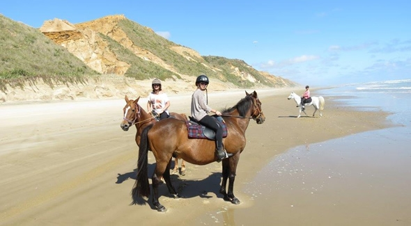 Image of Horse riding on Ripiro Beach