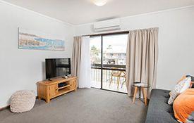 large 1-bedroom unit