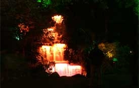Festival of Lights in Pukekura Park
