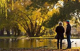 Hagley Park and Gardens