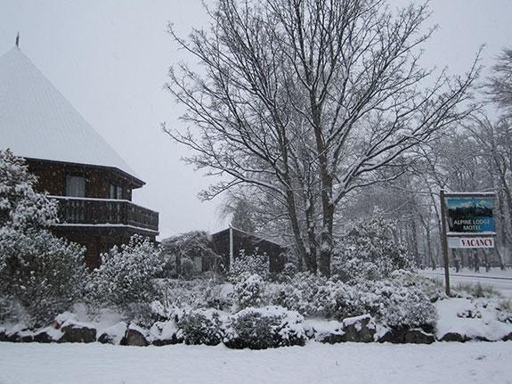 Alpine Lodge Motel in winters