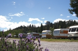 Camping Ground Accommodation Alexandra