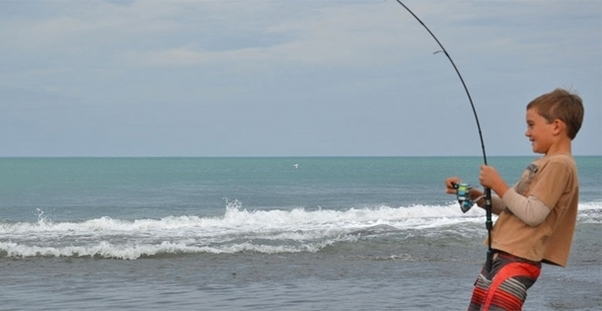 perfect holiday accommodation in Kaikoura