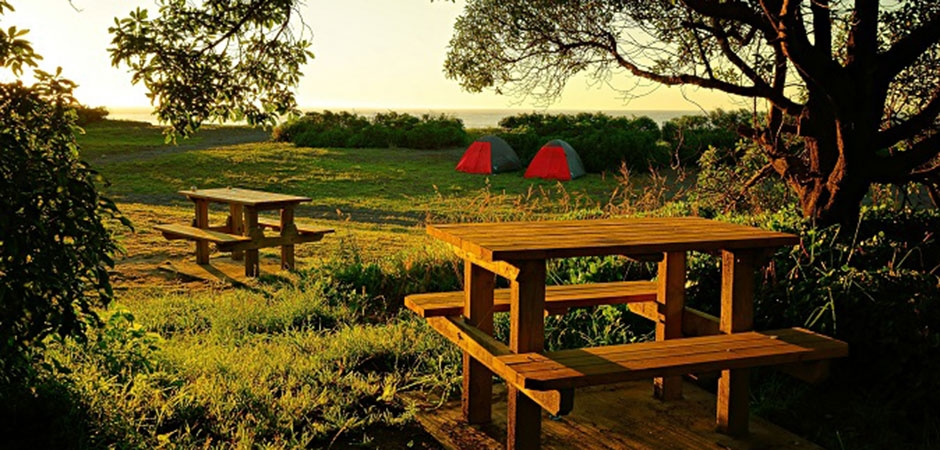 keep your kids busy and entertained at Peketa Beach Holiday Park