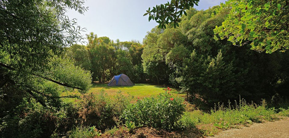 your perfect holiday park when you visit Kaikoura