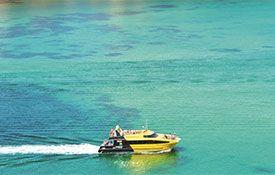 Explore: Discover the Bay
