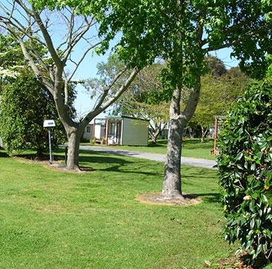 kiwifruit picking accommodation