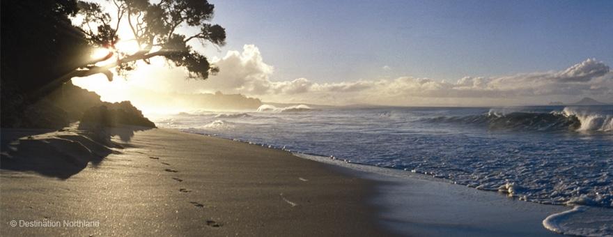 activities at Bream Bay and Waipu