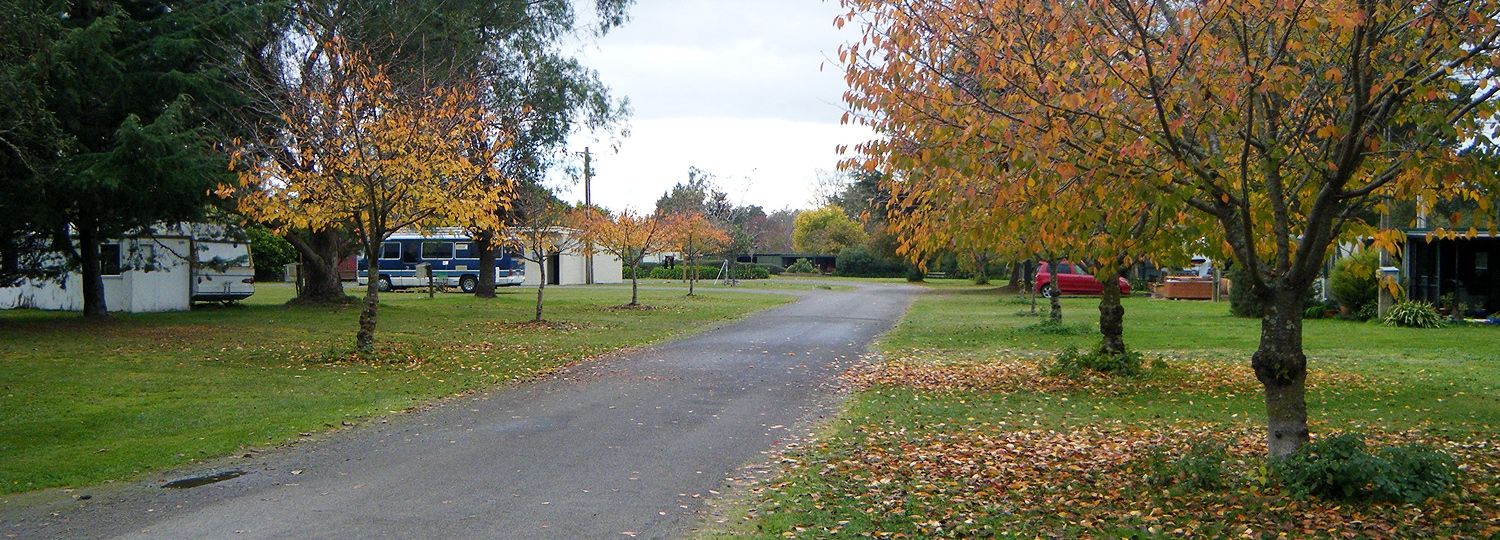 pet-friendly holiday park in Waipawa