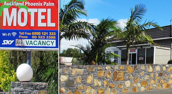 Auckland Phoenix Palm Motel in Remuera