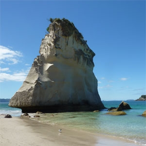 Sail Rock in Coromandel