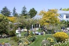 Nelmac Garden