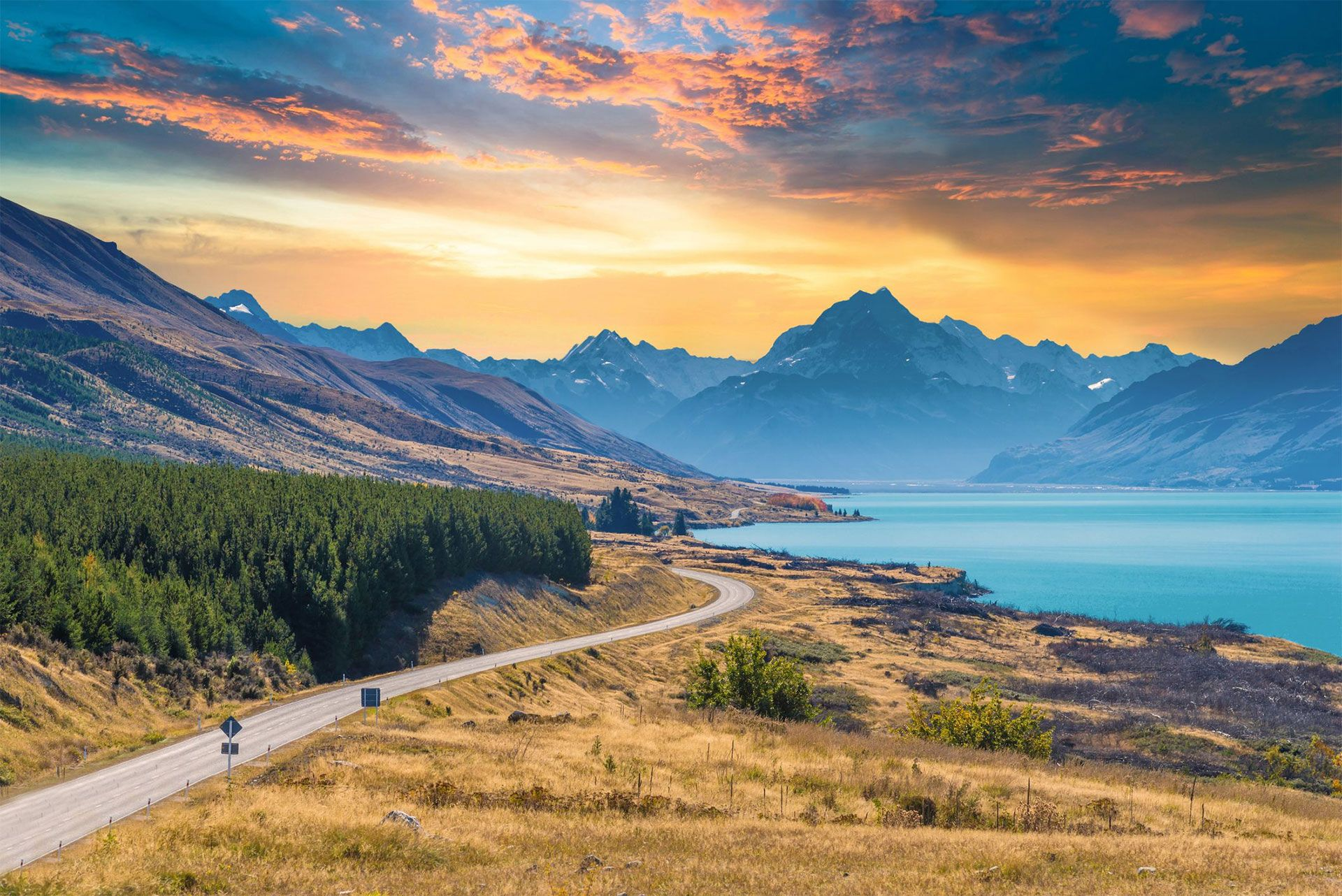 explore the South Island by bicycle