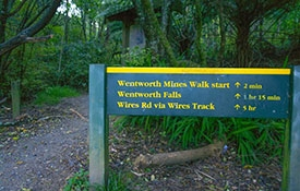 Wentworth Valley walks