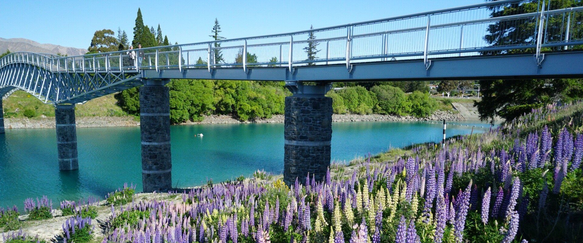 Lake Tekapo footbridge