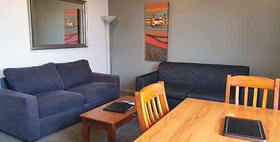 2-bedroom apt (b) lounge