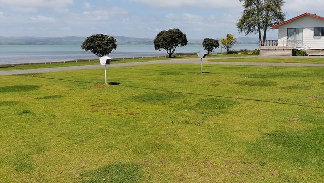 Kawhia holiday park
