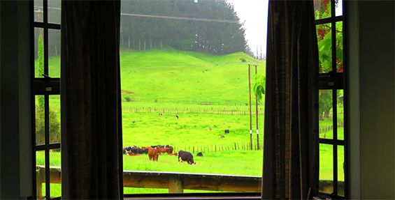self-contained chalet view