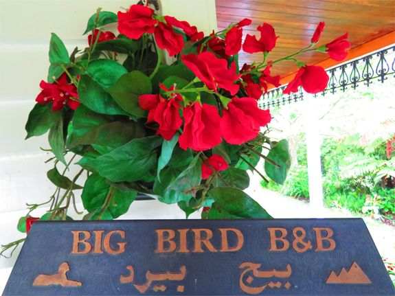 Big Bird B&B