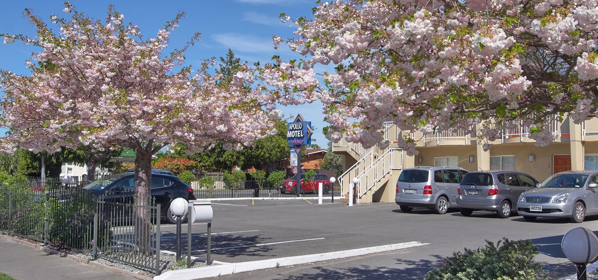 Apollo Motel in Riccarton