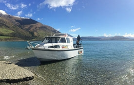 Queenstown Fishing