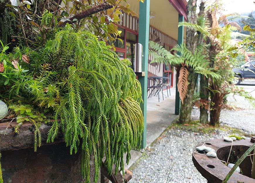outdoor BBQ facilities with seating area