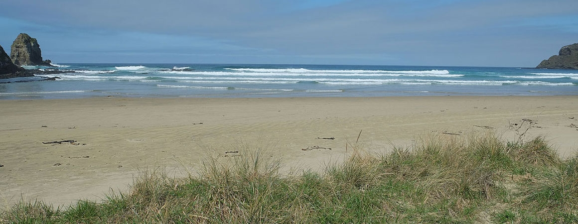 beautiful beaches of Catlins